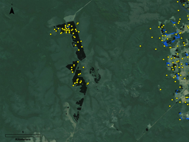 Deforestation in blind spots. New research shows that landowners in Brazil are clearing more forest than government measures suggest. In the satellite image above, black boxes and yellow dots indicate deforestation taking place in the blind spots of Brazil's forest monitoring system. Graphic: VanWey Lab / Brown University