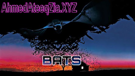 bats 1999 full movie in hindi free download