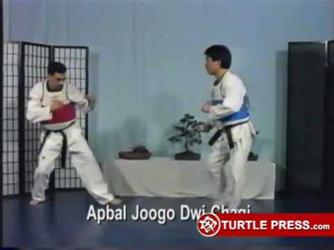 Taekwondo Advanced Sparring Techniques Volumes 1 5 5 DVD Set Movie HD free download 720p
