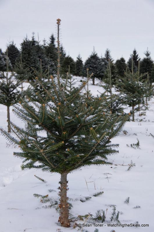 Vermont - Winter 2013 - IMGP0503.JPG