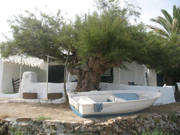 Es Grau-Menorca