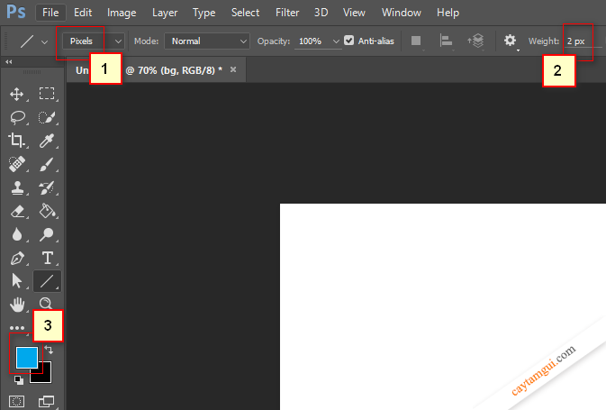 Hướng dẫn vẽ đường thẳng, đường cong trong Photoshop