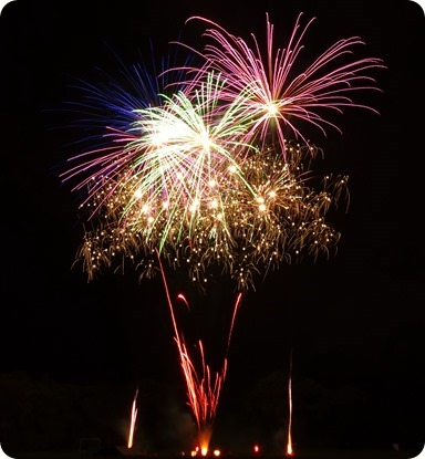 Fireworks display (3)