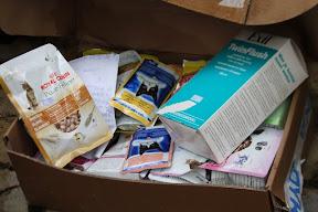Thank you - Abandoned Pets Foundation