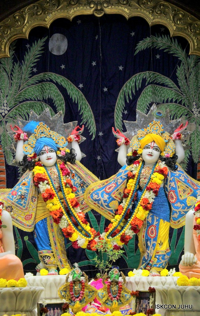 ISKCON Juhu Sringar Deity Darshan 22 Nov 2016 (43)
