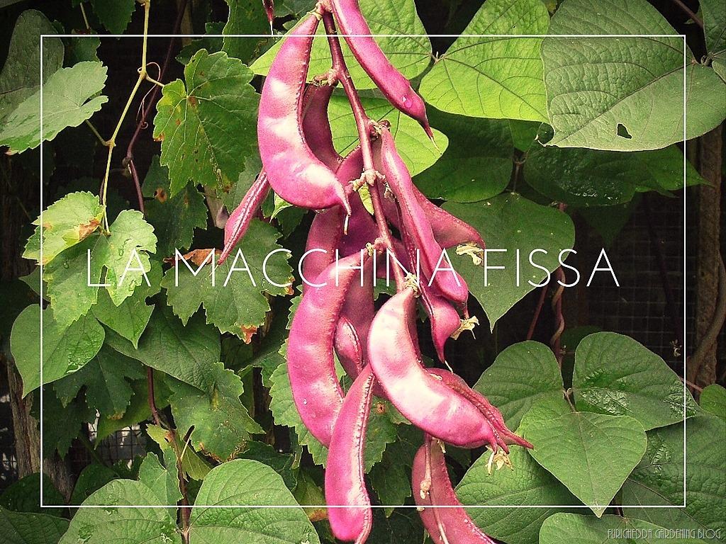 [La+Macchina+Fissa+20%5B3%5D]