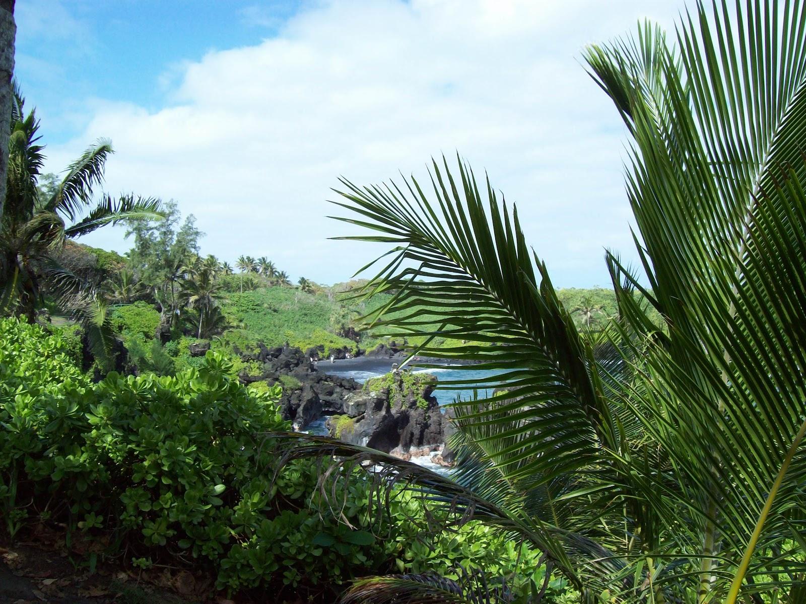 Hawaii Day 5 - 100_7452.JPG