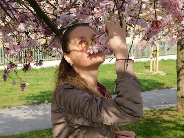 Linda s květem sakury