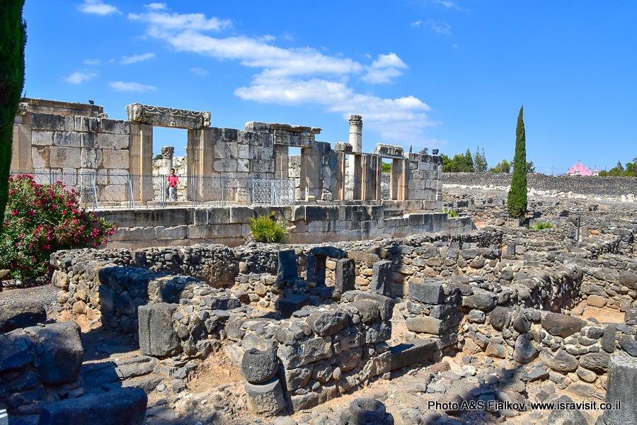 Капернаум. Раскопки руин древнего города. Экскурсия по Галилее христианской гида Светланы Фиалковой.