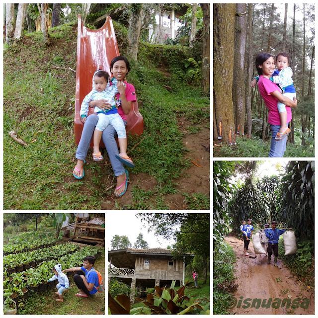 Berkeliling Vila Botani