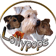 Lollypops Videos