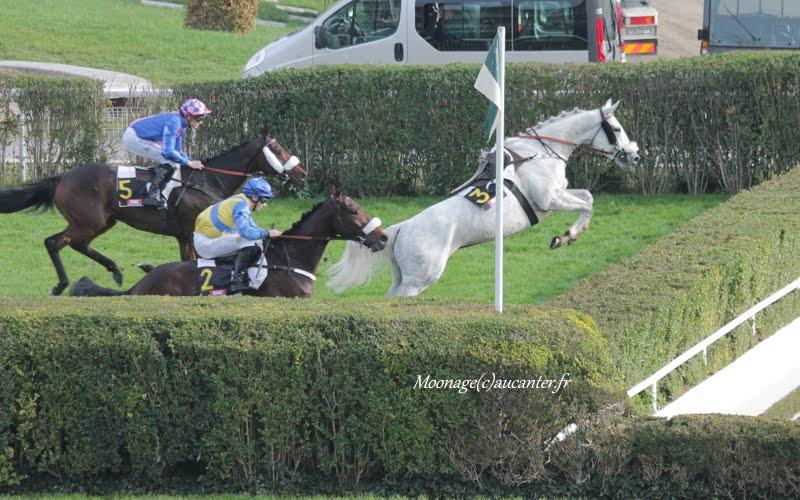 Photos Auteuil 8-11-2015 (48h de l'obstacle) IMG_6856