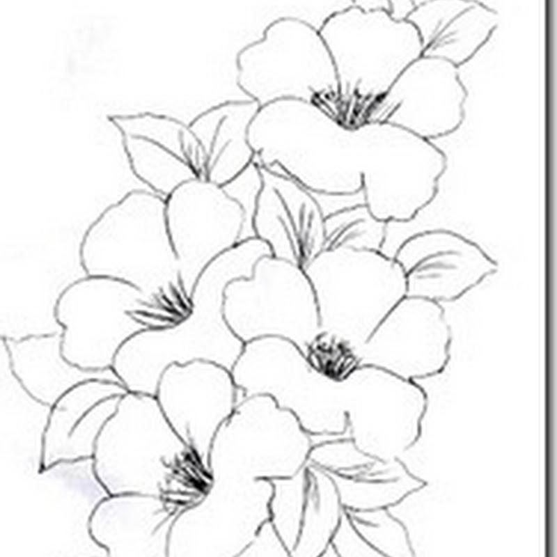 Desenhos Para Imprimir Colorir E Pintar Desenhos De Flores Para
