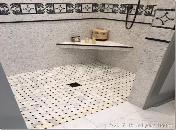 SL master bath 4
