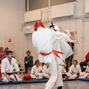 KarateGoes_0223.jpg