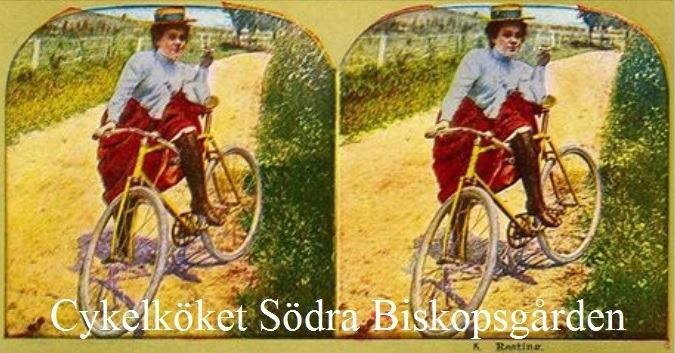 [Cykelkket-Sdra-Biskopsgrden24]
