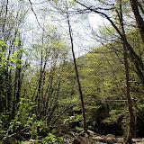 Campaments Amb Skues 2007 - ROSKU%2B135.jpg
