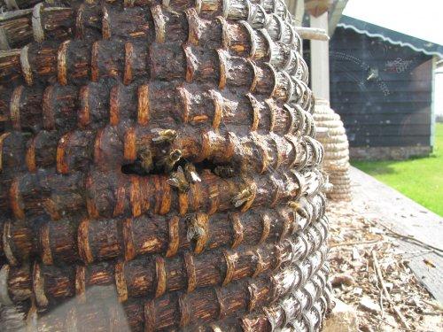 Bijtjes komen terug van hun vlucht en brengen nektar mee, waar nadien honing van komt.