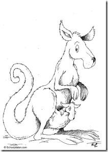 canguru-12