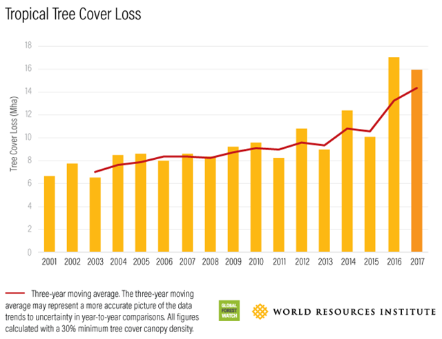 Tropical tree cover loss, 2001-2017. Global tree cover losses have doubled since 2003, while deforestation in crucial tropical rainforest has doubled since 2008. Graphic: Global Forest Watch / World Resources Institute