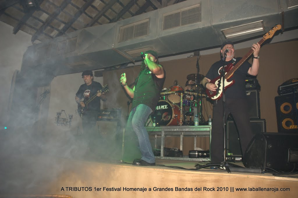 A TRIBUTOS 1er Festival Homenaje a Grandes Bandas del Rock 2010 - DSC_0199.jpg