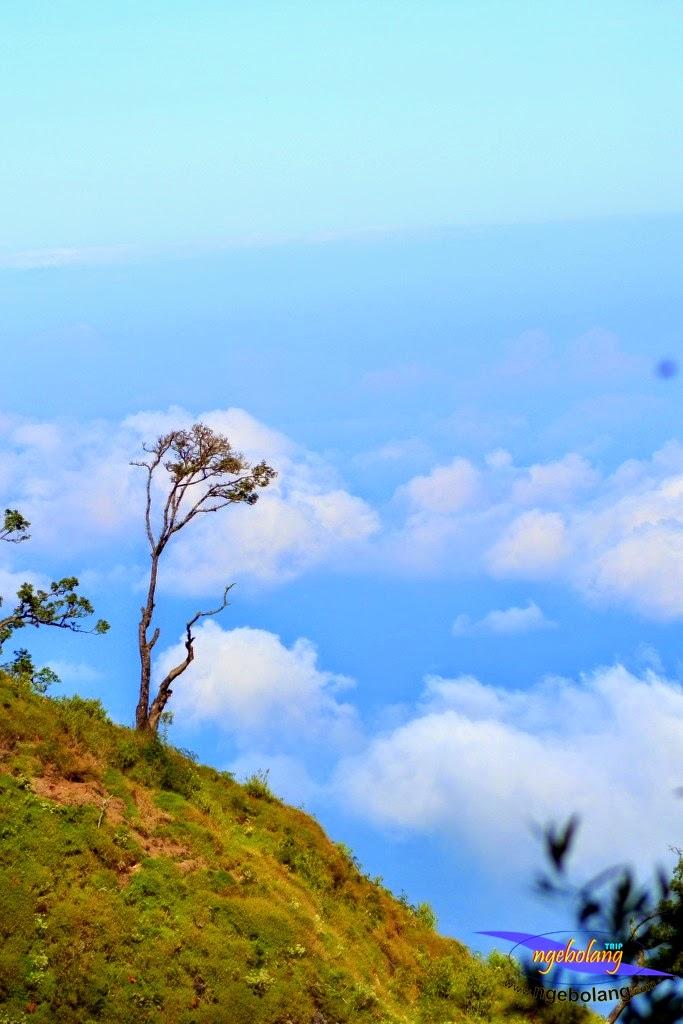 ngebolang gunung sumbing 1-4 agustus 2014 nik 21