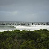 _DSC7257.thumb.jpg