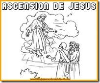 ascesnion 4 1