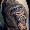 Gorilla Scream