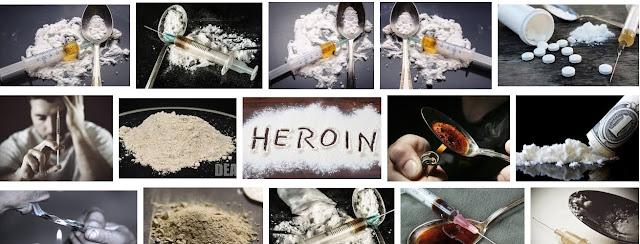 Ketika Dorothy ambruk di tengah bunga poppy di Wizard of Oz Fakta ihwal Heroin Untuk menambah Wawasan