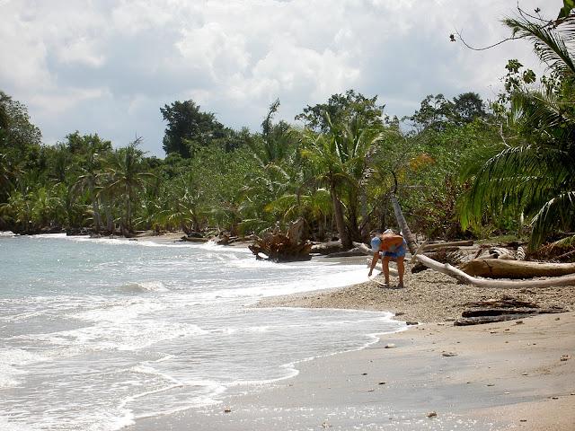 2007-02-01 Hike Cahuita - PICT3204.JPG