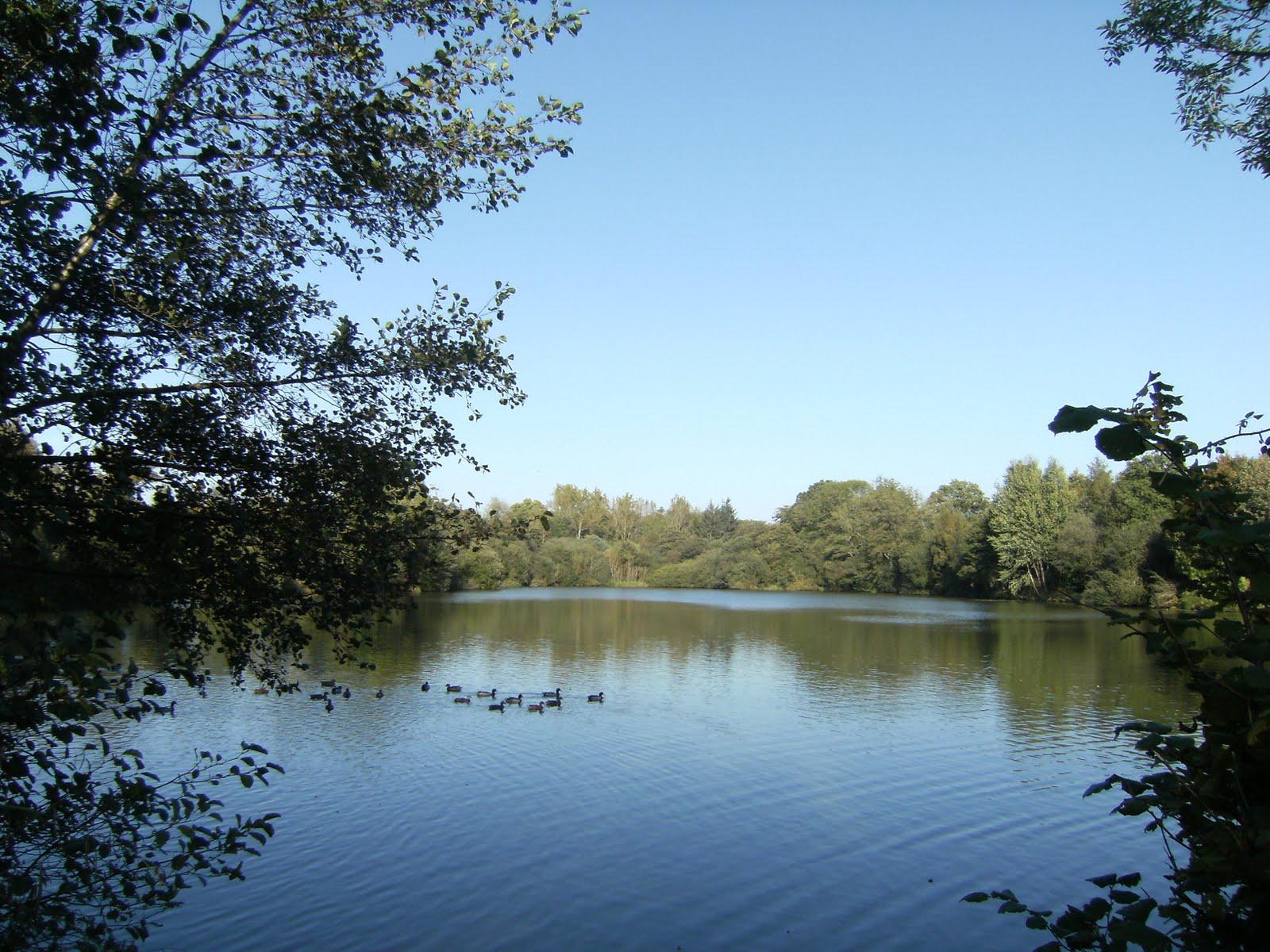 DSCF0021 Mill Lake
