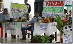 En Putumayo 500 familias ratificaron su compromiso de sustituir cultivos de coca
