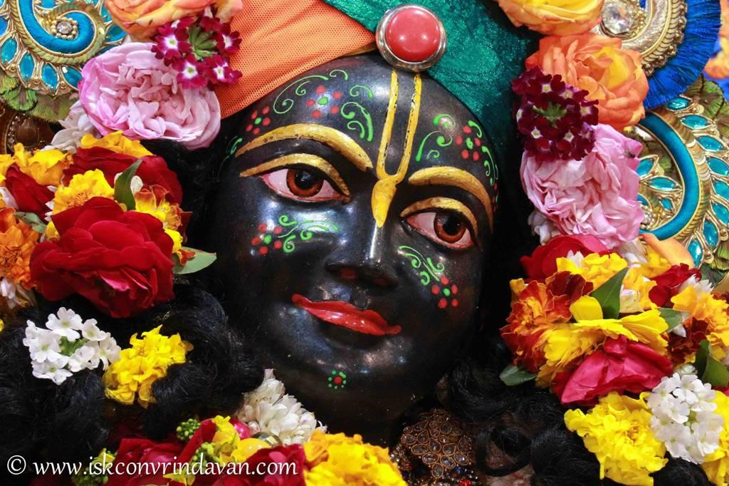 ISKCON Vrindavan Sringar Deity Darshan 03 Feb 2016 (17)