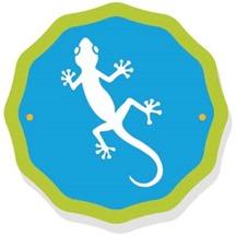 300px - Gecko2