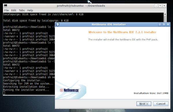 Инсталация на NetBeans в Lubuntu 12.04_64