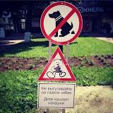 Не выгуливайте на газоне собак Дети кушают какашки
