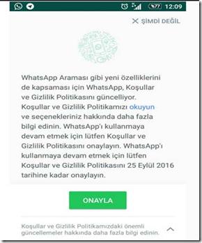 whatsapp-gizlilik-politikasi