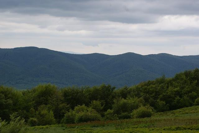 Wycieczka LO Tarnica - DSC06890_1.JPG