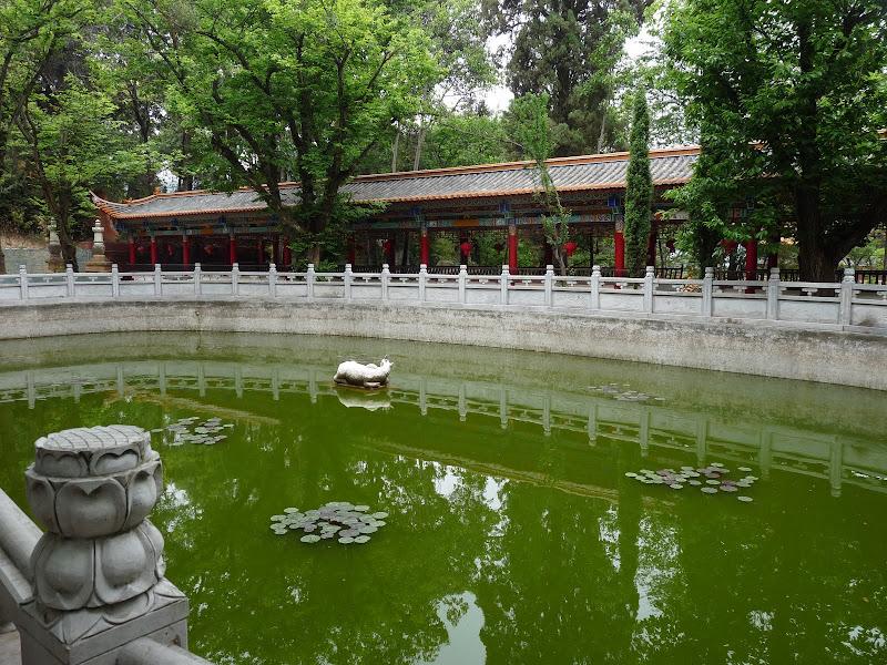 Chine .Yunnan . Lac au sud de Kunming ,Jinghong xishangbanna,+ grand jardin botanique, de Chine +j - Picture1%2B351.jpg