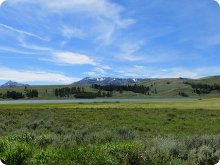 Swan Lake Flats from  Bunsen Peak