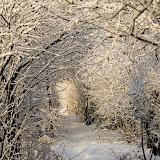Зимний тоннель