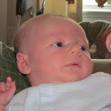 Meet Marshall! - IMG_0421.JPG