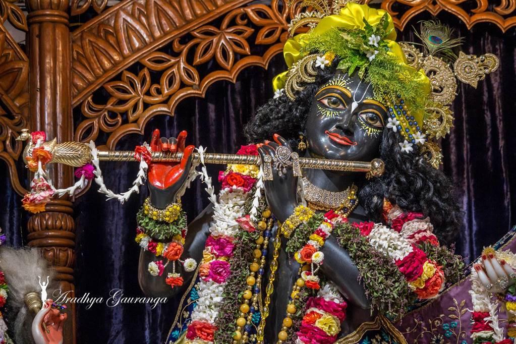ISKCON Mayapur Deity Darshan 01 Mar 2016 (39)