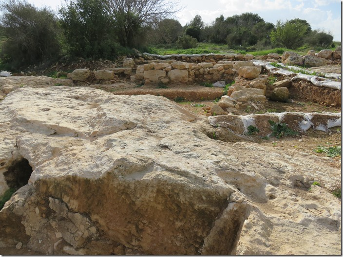 2016-02-05 Hiking Beit Shemesh 013