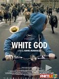 Phim Cuộc Nổi Dậy Của Loài Chó - White God (2014)