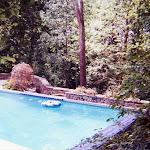 images-Pool Environments and Pool Houses-Pools_15.jpg