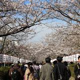 2014 Japan - Dag 7 - marjolein-IMG_0988-0621.JPG