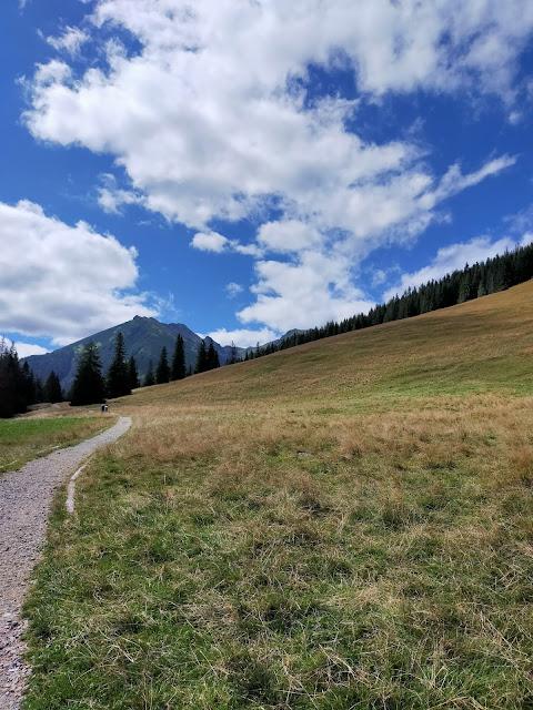droga idąca wzdłuż doliny, w oddali Tatry wysokie