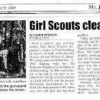 Newspaper article about the clean-up